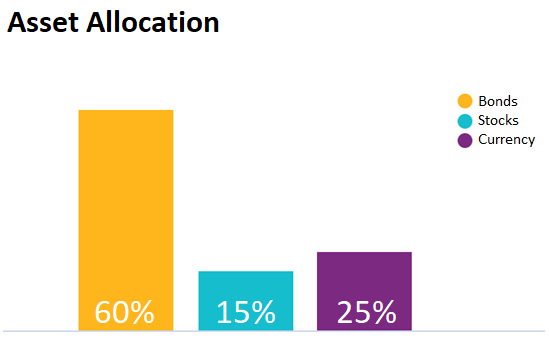 Asset allocation visualization